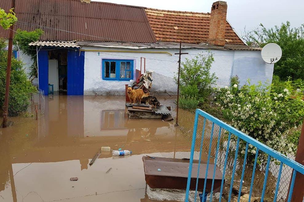 В результате наводенения пострадало имущество и домовладения жителей поселка Широкое