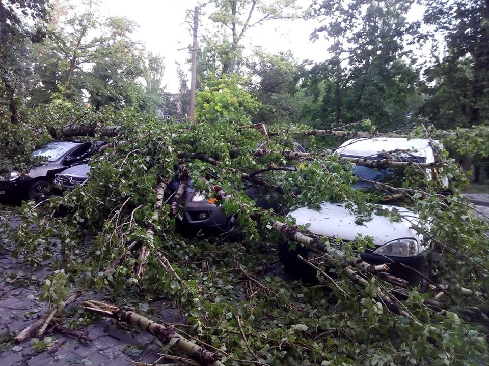 Деревья падали на машины невзирая на марку, статус владельца и стоимость авто