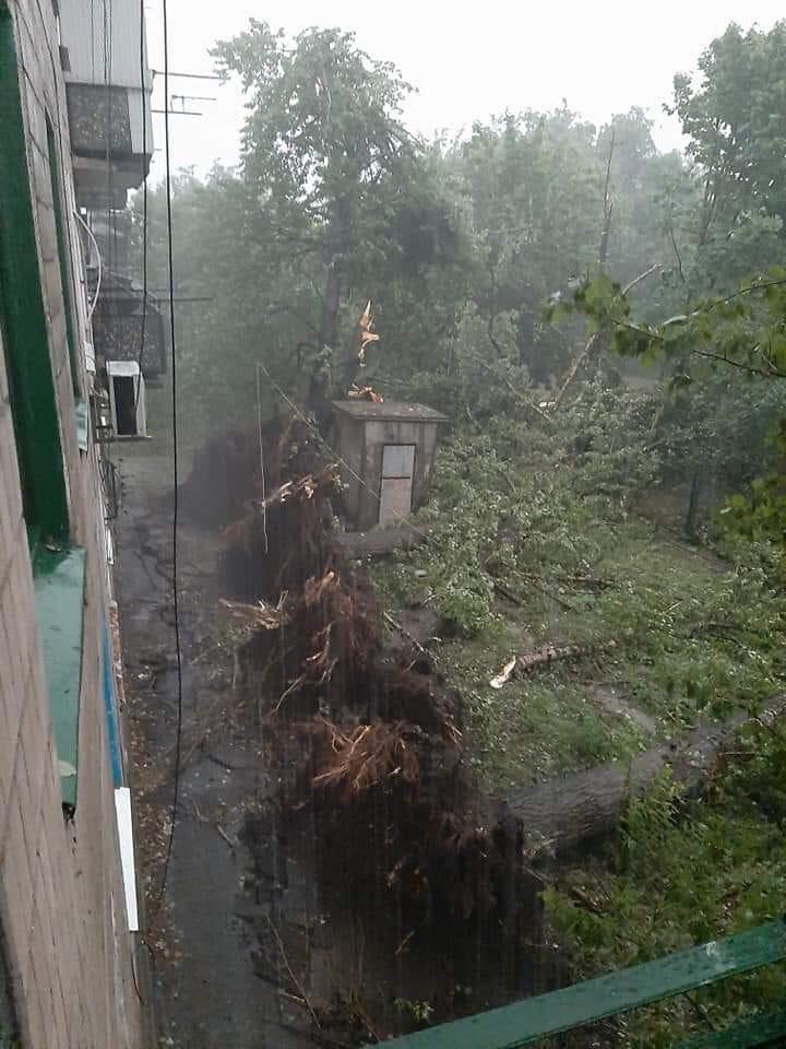 Ураган повалил деревья в Кривом Роге как спички