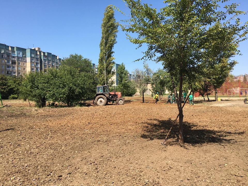 Бывший пустырь на Восточном будет избавлен от амброзии и других сорняков