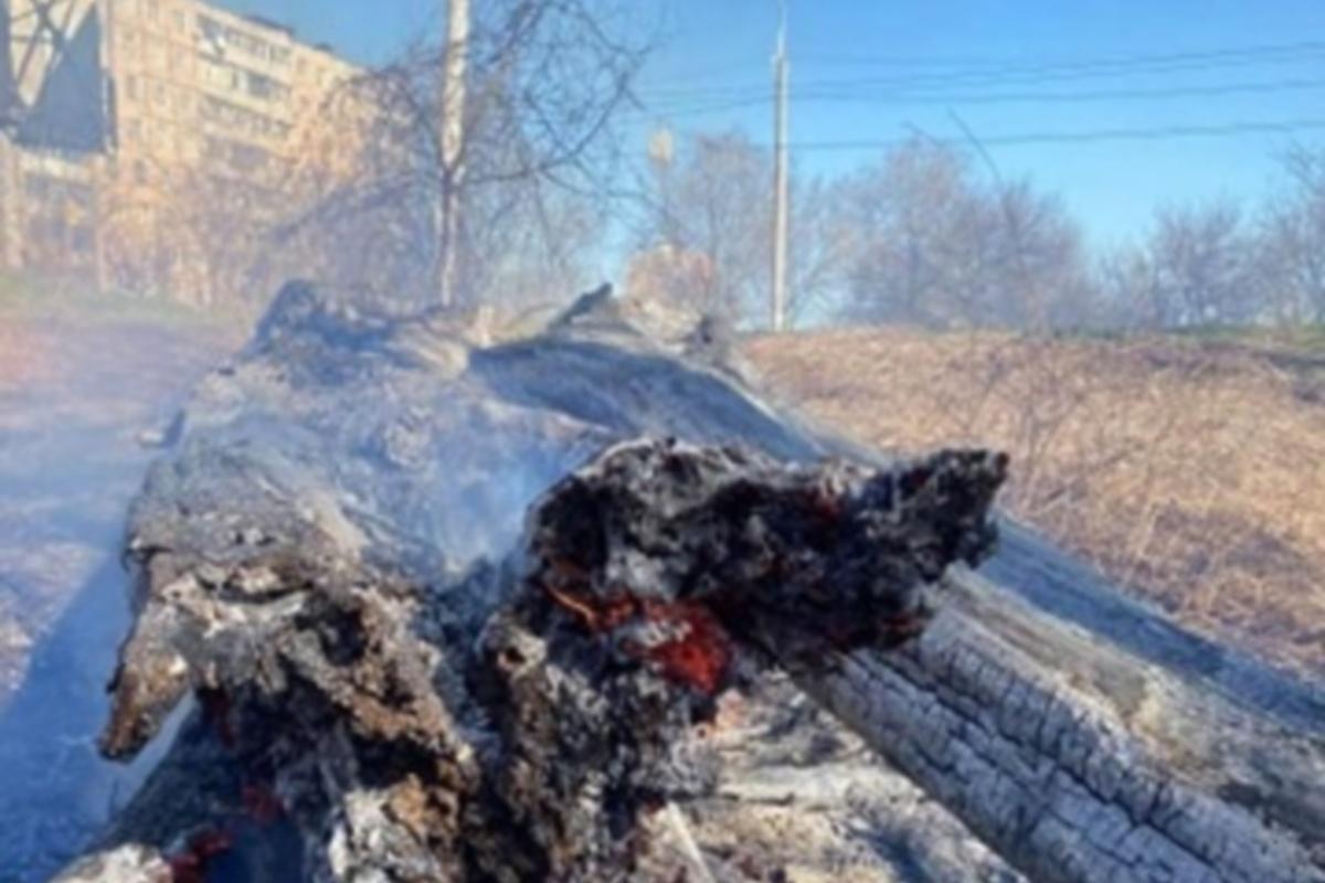 Пожар пылал в непосредственной близости от жилой застройки