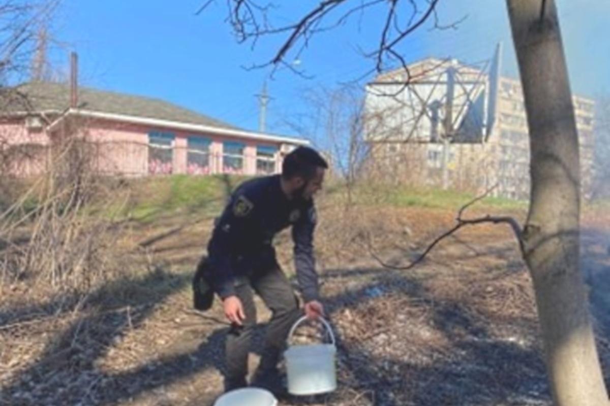 Местные жители боролись с огнем с помощью ведер с водой