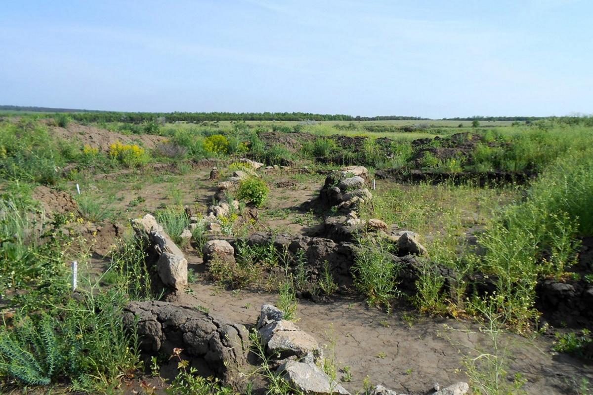 Древний курганный комплекс в Недайводе.
