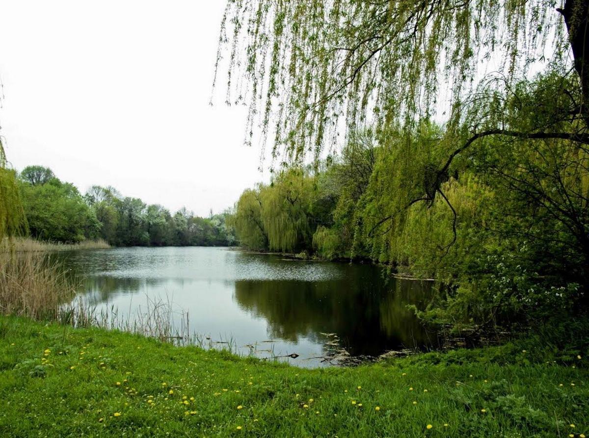 """Река Саксагань протекает через парк """"Веселые Терны""""."""